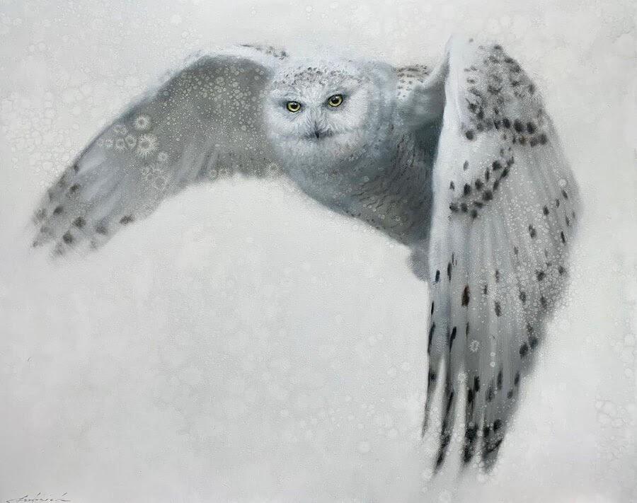 08-Snowy-Owl-David-Riley-www-designstack-co