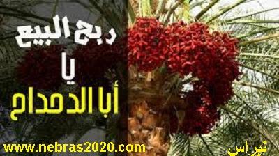 ابو الدحداح الصحابى الذى أشترى نخلة فى الجنة