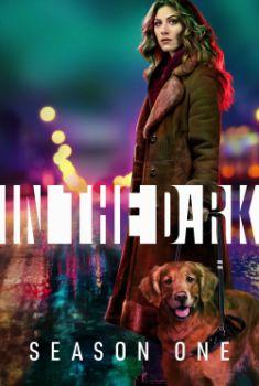 In the Dark 1ª Temporada Torrent - WEB-DL 720p/1080p Legendado