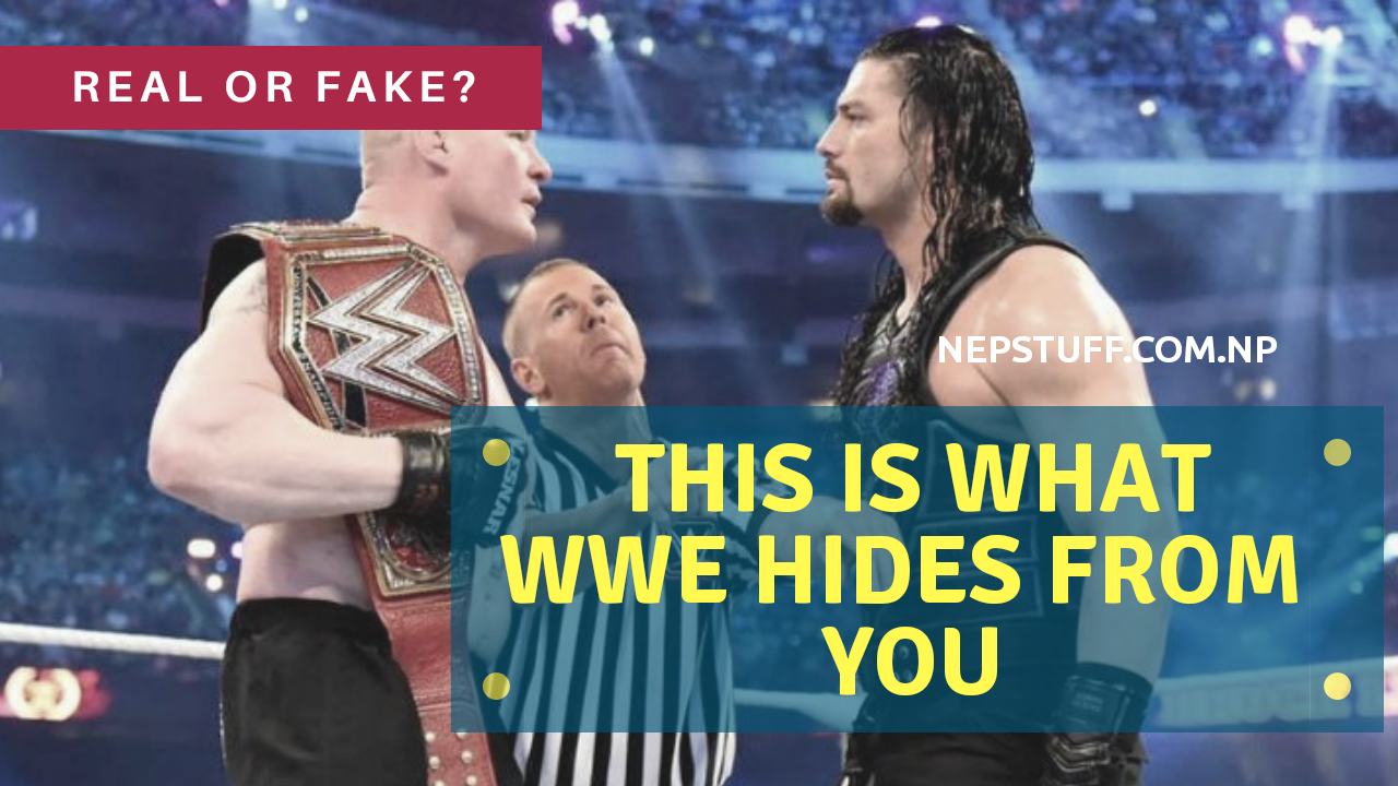 Know The Truth Behind WWE | Real Or Fake? 1