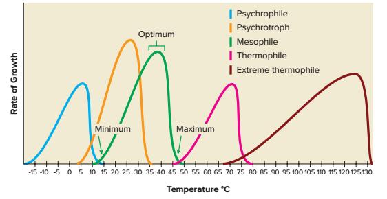 psikrofil, psikotrof, mesofile, termofil, dan hipertermofil (extreme thermophile)