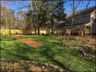 Back gardens at St Francis Cottage 2017