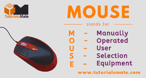 MOUSE Full Form