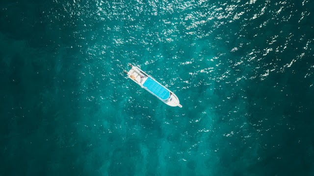 Top 10 Quotation on the Theme Survival in the novel Life of Pi by Yann Martel