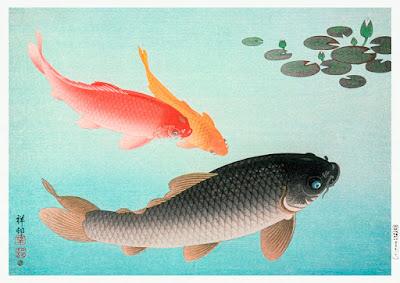 Top 10 Moral Stories In Hindi  तीन मछलियां