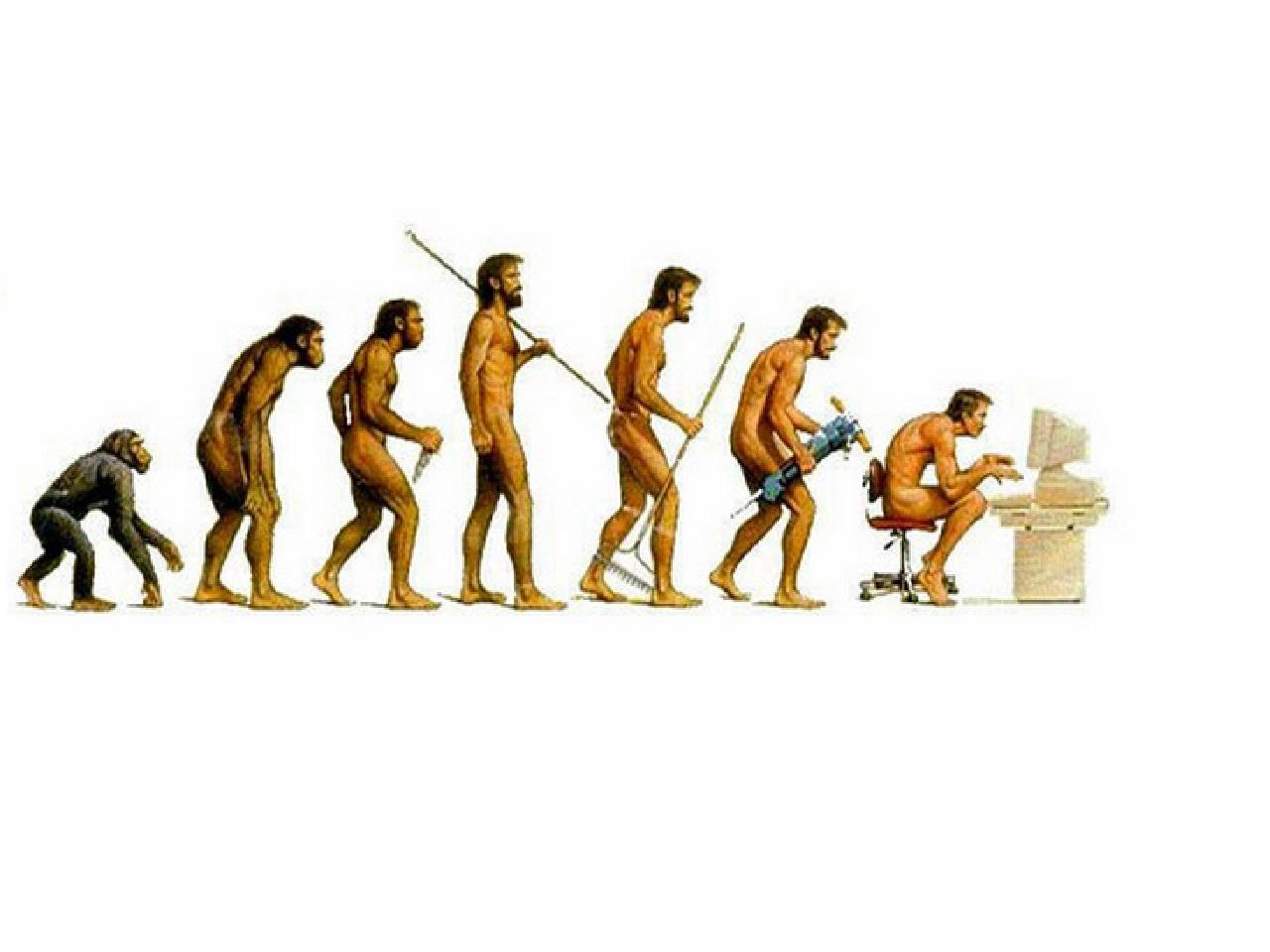 Evolution-1.jpg