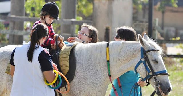 Saiba mais sobre a Terapia com Equinos
