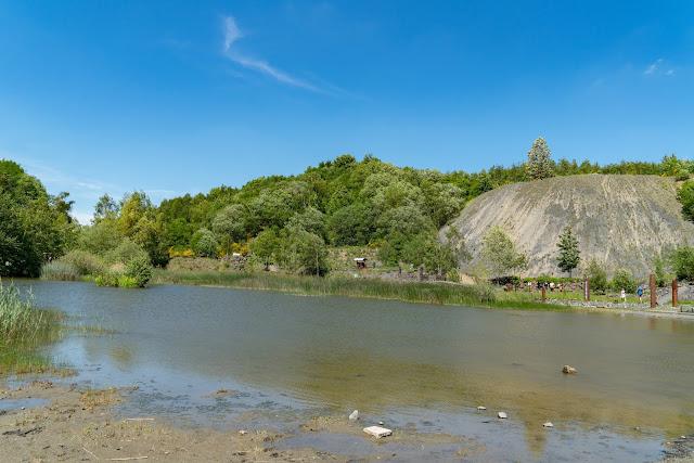 Westerwaldsteig Etappe 6 von Freilingen nach Nistertal  Westerwälder Seenplatte – Stöffelpark 19