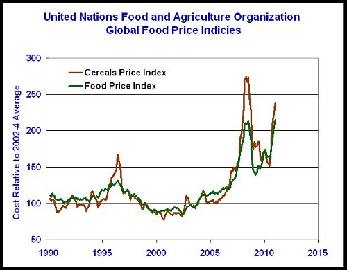 why did global food price rise 2 global food prices are measured in usd in this article prices have increased  less in eur and nok: the increase in the economist's food price index from.