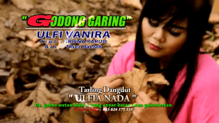 Lirik Lagu Ulfi Vanira - Godong Garing