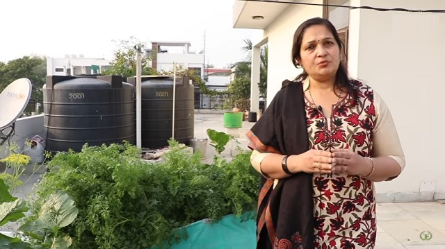 How to grow good vegetables with kitchen fertilizer at home