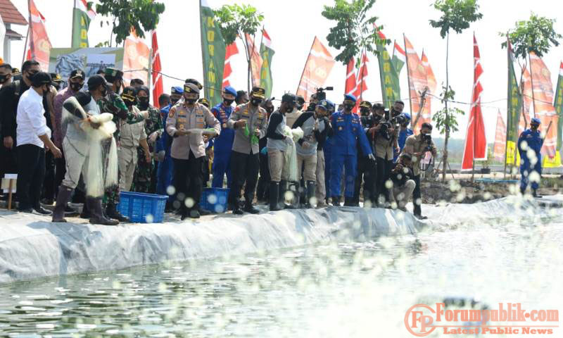 Gelar Panen Raya Serentak, TNI-Polri  Dukung Program Ketahanan Pangan Nasional