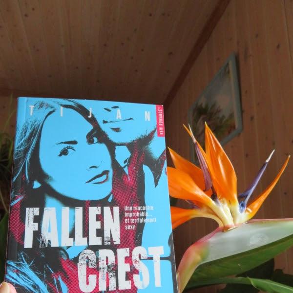 Fallen Crest, tome 1 de Tijan
