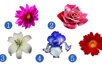 Выберите цветок и узнайте, что вас ждёт в ближайшем будущем
