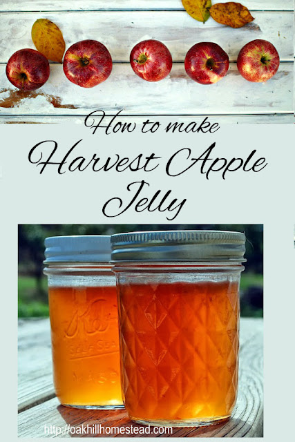 Here's how to make Harvest Apple Jelly in the crockpot, and how to can it so it's shelf-stable. This is one of my three favorite jellies/jams; I make them every year!