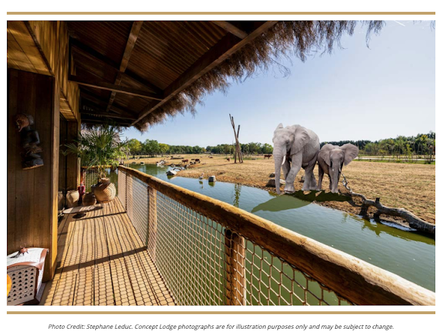 10 UK Zoos Where You Can Stay Overnight  - West Midland Safari Elephant Lodge