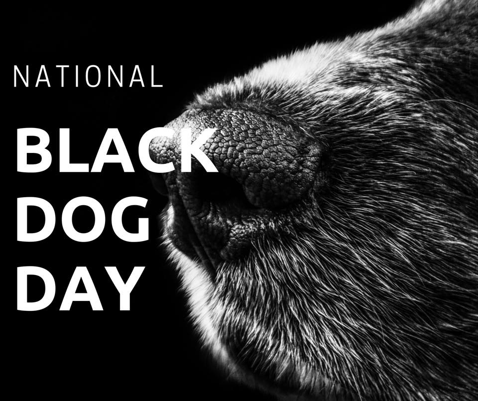 National Black Dog Day Wishes
