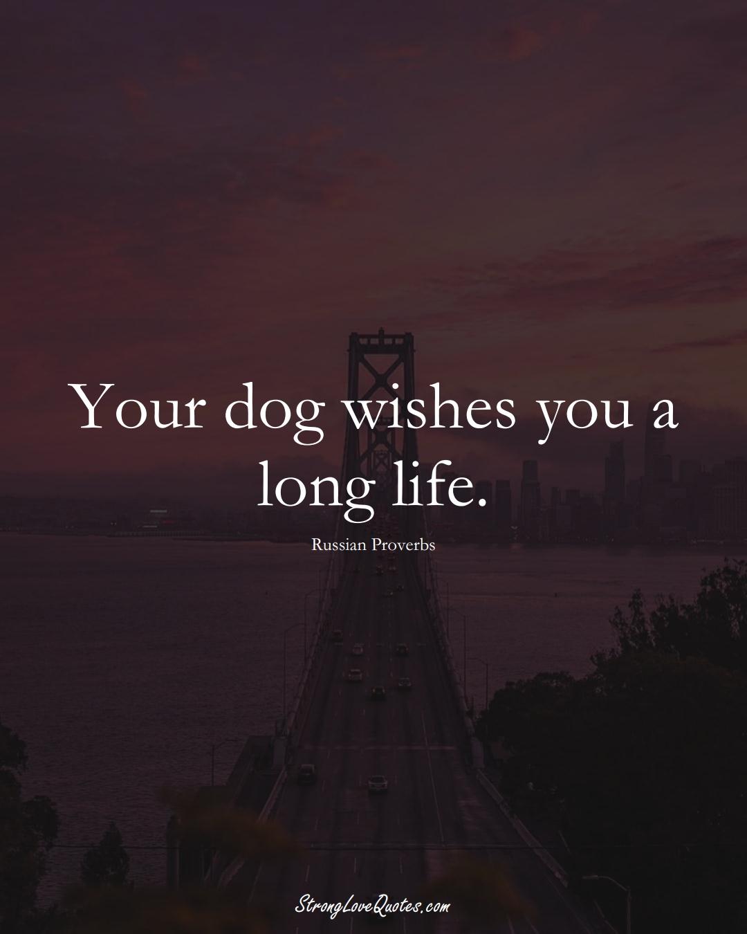 Your dog wishes you a long life. (Russian Sayings);  #AsianSayings