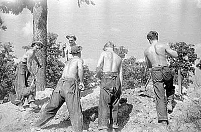 Mineradores