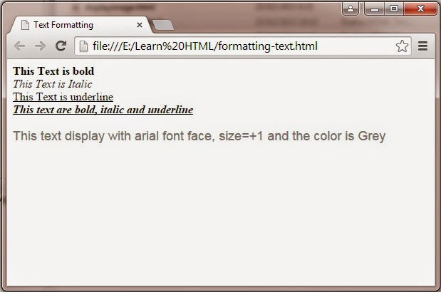 Formatting text to display the text as bold, italic and underline also specify the font type, size and color