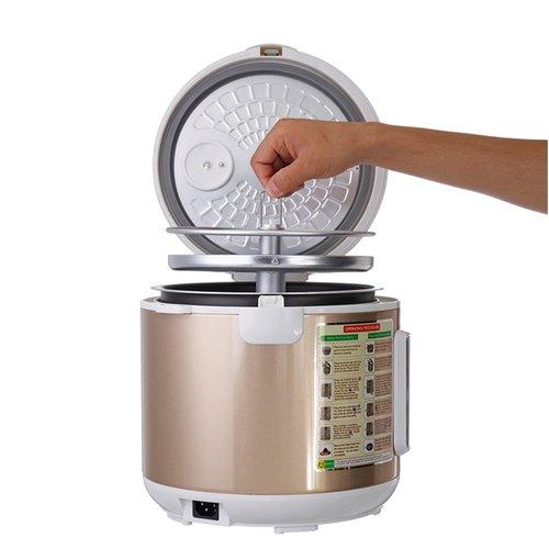 Wholesale Black Garlic Selling Business Idea - Fermentation Machine