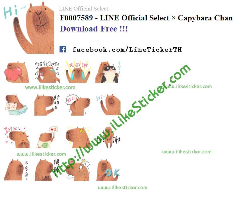 LINE Official Select × Capybara Chan