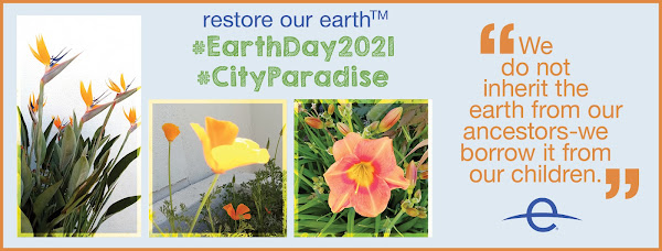 Earth Day 2021 collage