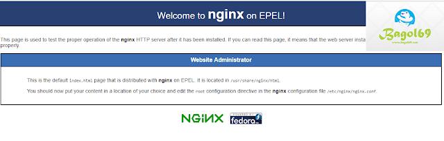 Install  Ngninx Centos