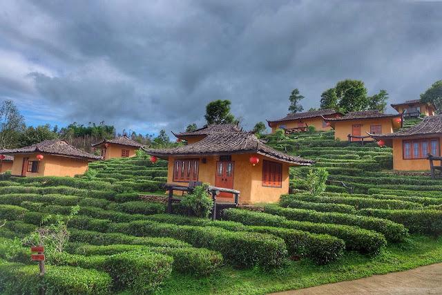 """Ban Rak Thai trong tiếng Thái có nghĩa là """"ngôi làng của những người yêu nước Thái"""". Ngoài ra nó còn còn được biết với cái tên Mae Aw. Khu làng này nằm trên độ cao 1.776 m so với mực nước biển, là nơi mà nhiều người Trung Quốc (sống tại Vân Nam) di cư sang sinh sống nên hầu hết người bản địa ở đây đều rành tiếng Hoa."""
