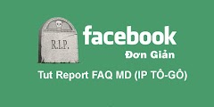 Tut Report FAQ MD (IP TÔ-GÔ)