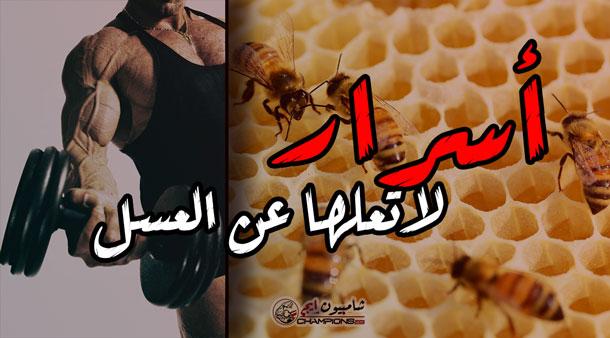 عسل-النحل-وفوائده-لبناء-العضلات