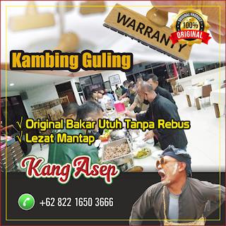 Kambing Guling Bandung Murah Bergaransi, kambing guling bandung, kambing guling,