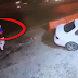 شاهد بالفيديو لحظة دهس بائع قهوة في الأردن في حادث سير مروع