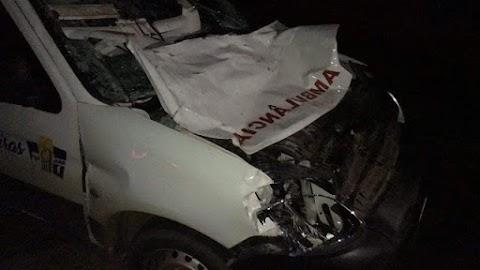 Ambulância de Pedreiras colide em vaca na Rodoviária MA-381