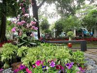 10 Taman Favorit Untuk Selfie Di Bandung