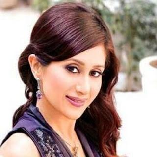 Teejay sidhu wedding, karanvir bohra, age, wiki, biography