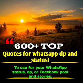600+ Best Quotes for whatsApp DP and status