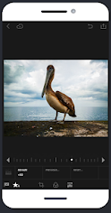 Pixelmator Photo Editing App