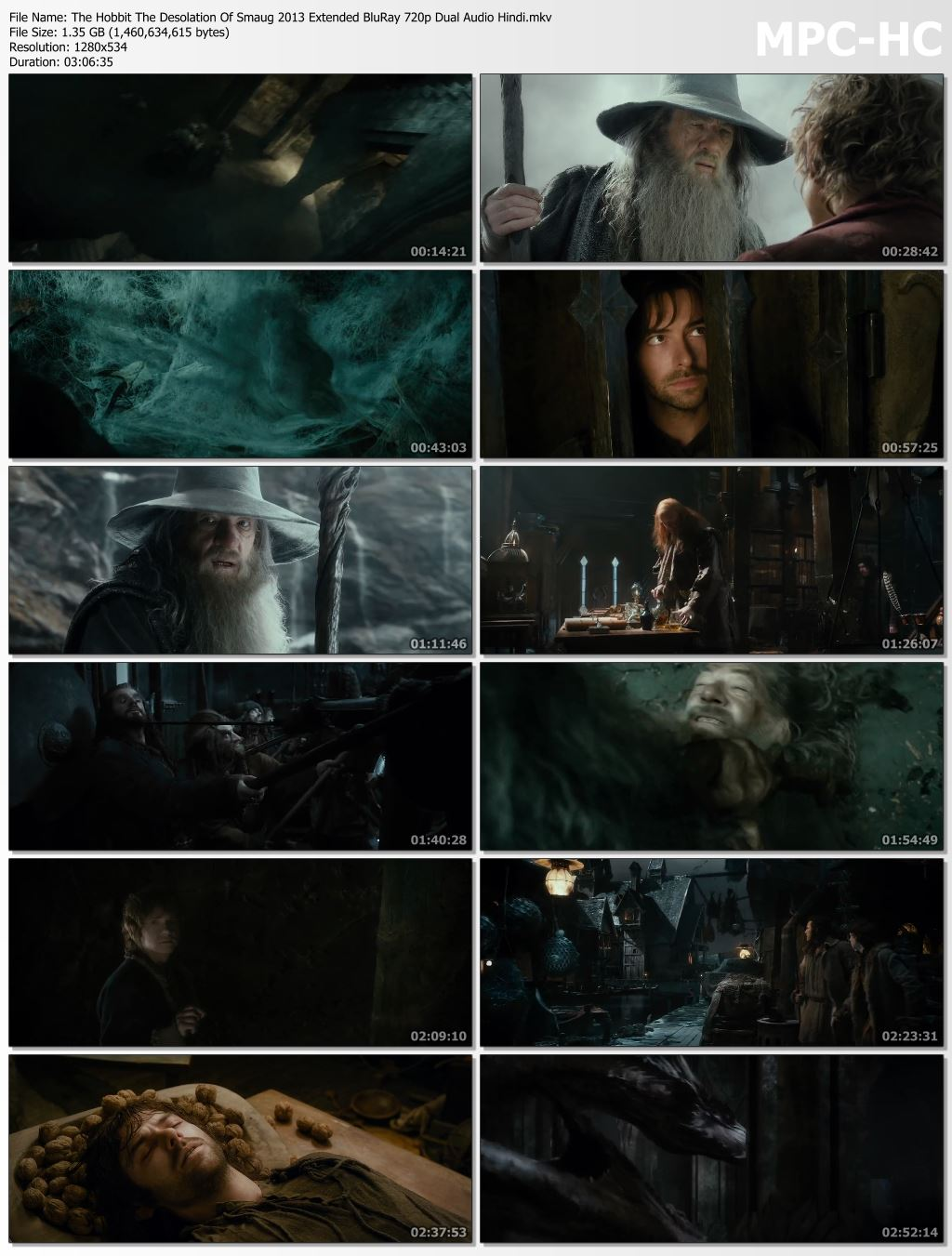 The Hobbit The Desolation Of Smaug 2013 Extended Dual Audio Hindi 480p BluRay 500mb Desirehub