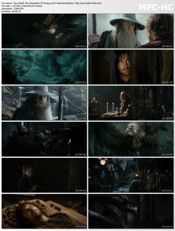 The Hobbit The Desolation Of Smaug 2013 Extended Dual Audio Hindi 480p BluRay 500mb Desirehub