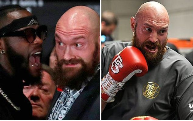 tyson-fury-deontay wilder-fight