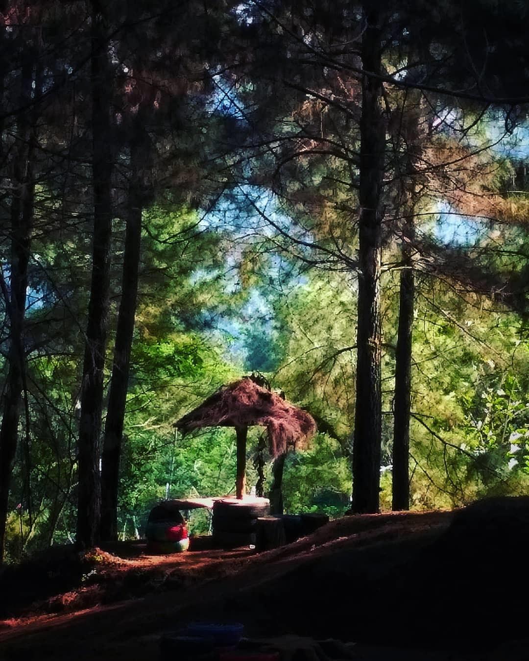 Bukit Besek Kalipancer