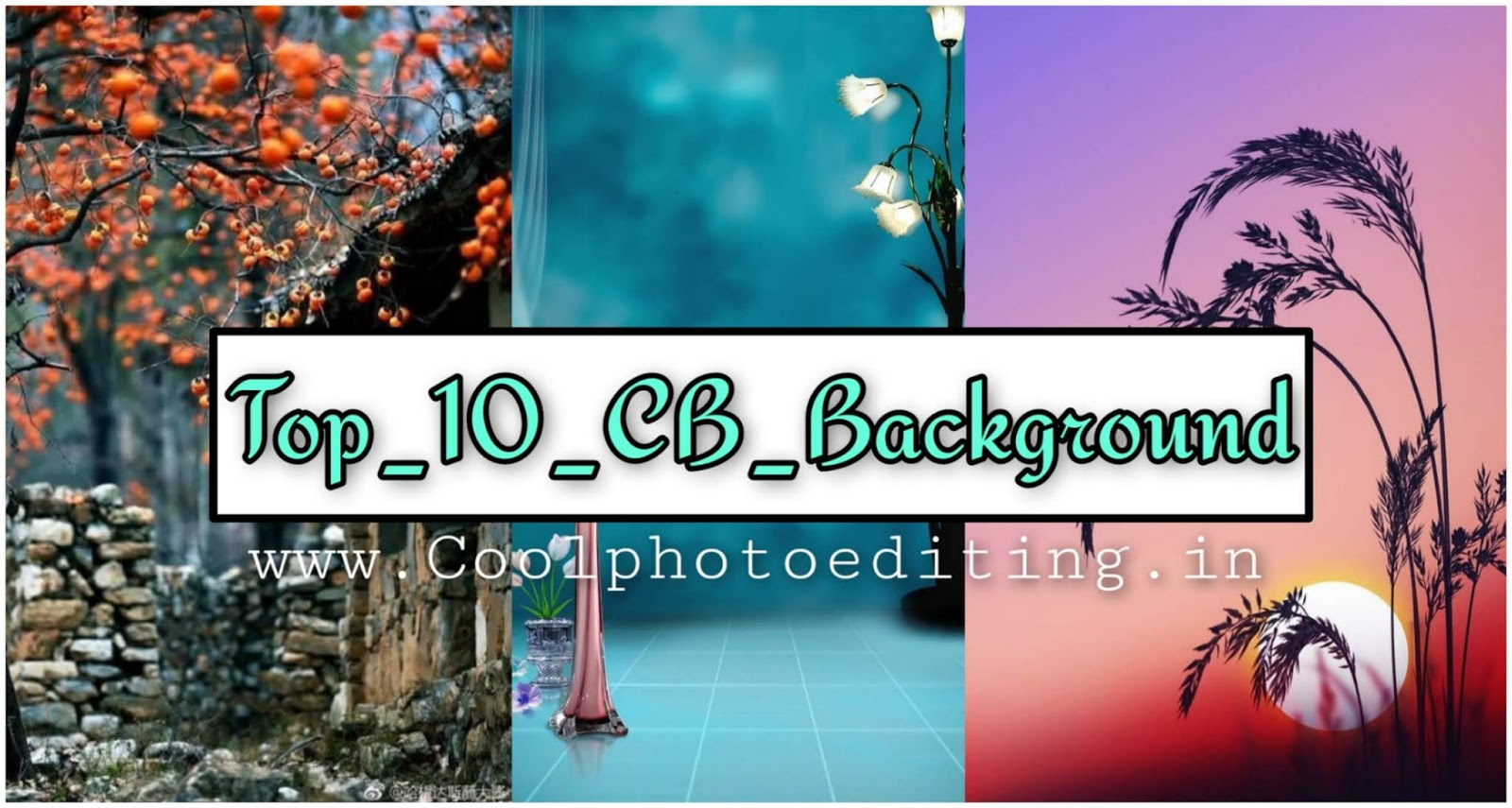 www.coolphotoediting.in
