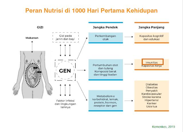 Tahapan nutrisi di 1000 hari pertama