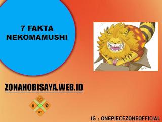anggota 9 sarung pedang merah, 7 Fakta Nekomamushi One Piece