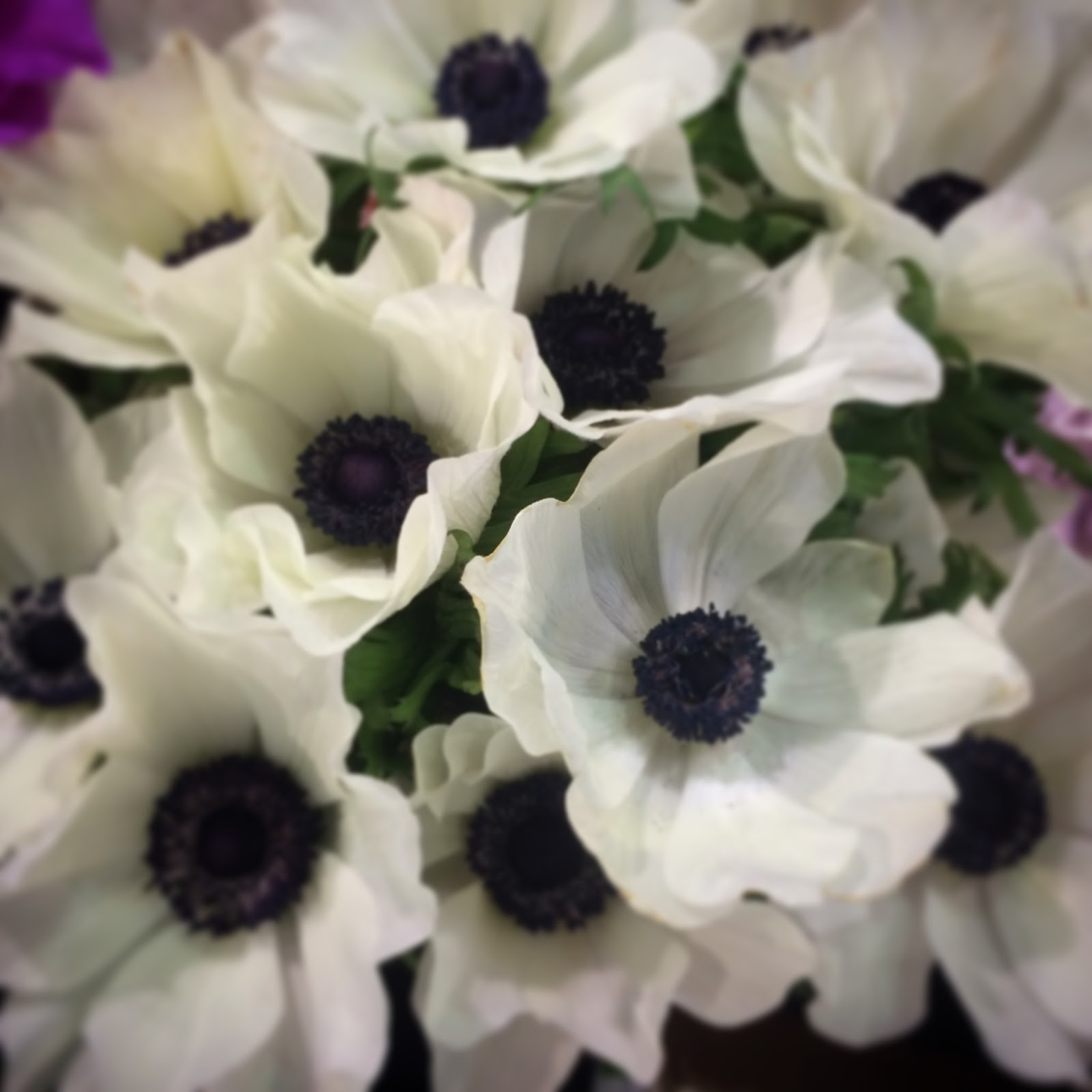 The Top 10 Things To Look For When Choosing A Floral Design School