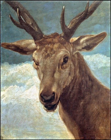 I primi 10 ritratti di animali