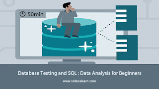 Database Testing and SQL : Data Analysis for Beginners