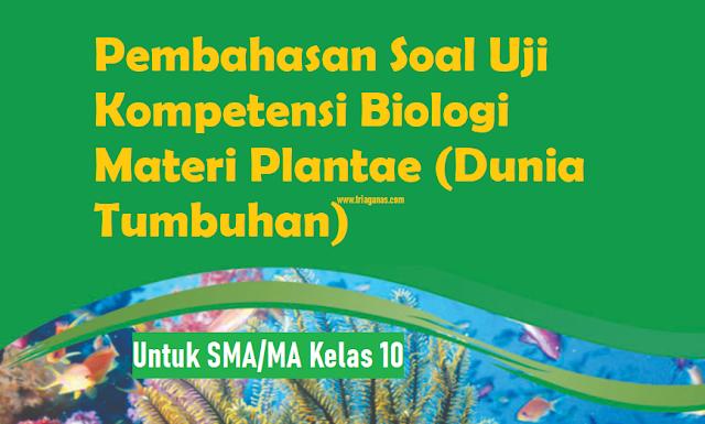 soal-uji-kompetensi-biologi-plantae