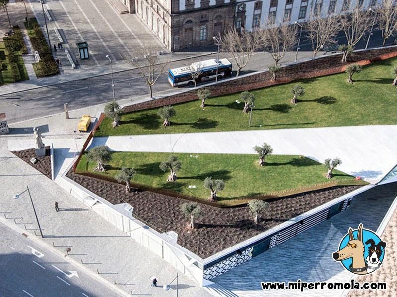 Jardín De Las Oliveiras